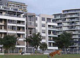 Apartment buildings and an adjoining park in suburban Sydney