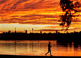 A male jogger running along the shore of Sydney Harbour at sunset.