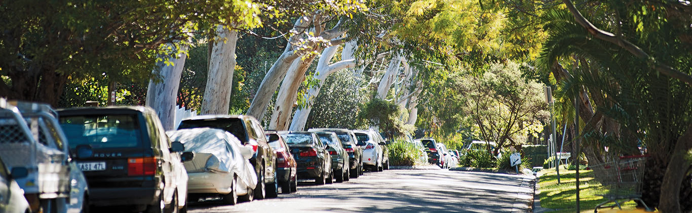 A photograph of cars parked in along a tree-lined street in Lane Cove.
