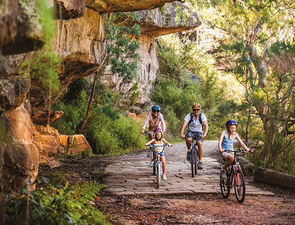 A photograph of a family riding bicycles in bushland in the Royal National Park.