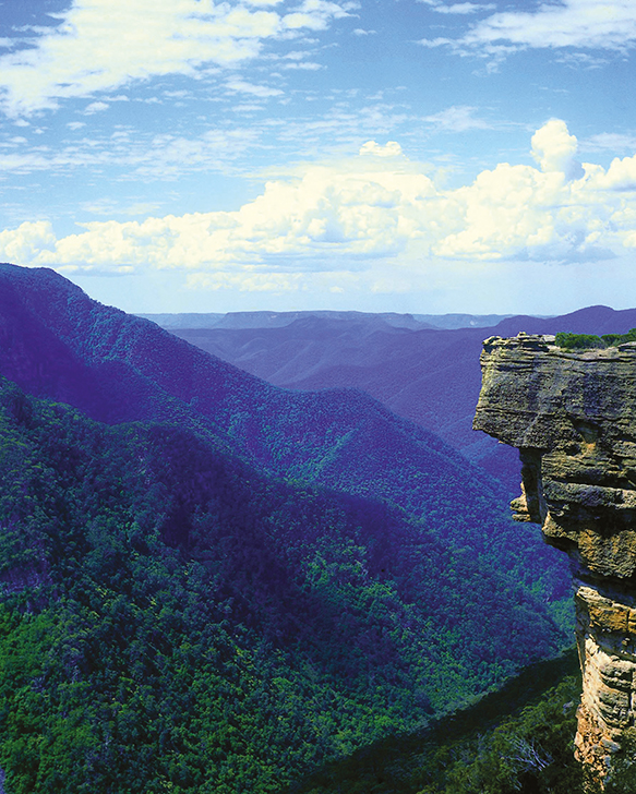 Photograph of Greater Blue Mountains World Heritage Area
