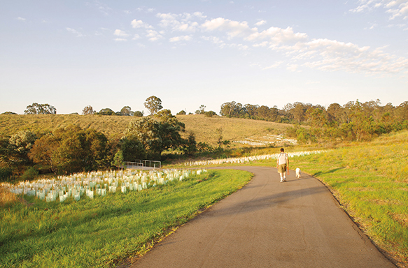 Photograph of a man walking a dog through a field in Western Sydney Parklands, Doonside.