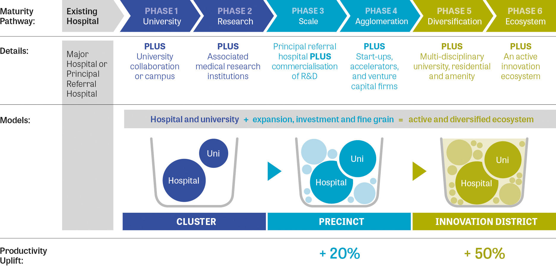 Diagram showing the six-phase maturity pathway from existing hospital to Innovation District for health and education precincts. Phases included University, Research, Scale, Agglomeration, Diversifications and Ecosystem.